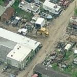 White Oak Salvage (Birds Eye)