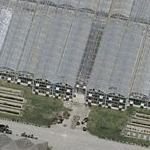 Architect of the Capitol Nursery Facility (Bing Maps)