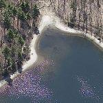 Walden Pond (Birds Eye)