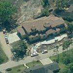 Ira Mitzner's house (Birds Eye)