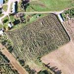 Vermont Corn Maze