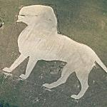 Whipsnade Wildlife Park (Bing Maps)