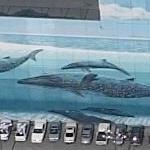 Wyland Whale Mural - 'The Blue Whales' (Birds Eye)