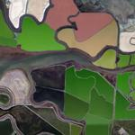 Salt Ponds (Bing Maps)