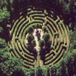 Maze (Bing Maps)