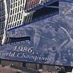 '1986 World Champions' (Birds Eye)