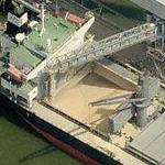 Grain being loaded into ship