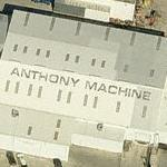 'Anthony Machine' (Birds Eye)