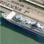 Cruise ship in Venice (Birds Eye)