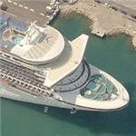 Princess Cruises ship 'Golden Princess' (Birds Eye)