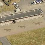 Horses at Doncaster Raceway (Birds Eye)