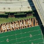 Bengals practice field