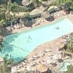 California shaped pool