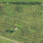 Longest hedge maze in the world