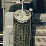 Westin Peachtree Plaza (Birds Eye)
