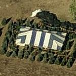 Christmas Trees For Sale (Birds Eye)