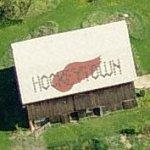 Detroit Red Wings Hockeytown barn (Birds Eye)