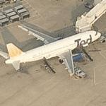 United Airlines- Ted - Airbus A320-232 (Birds Eye)