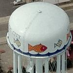 Fish water tower (Birds Eye)