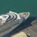 Royal Caribbean's 'Voyager of the Seas' (Birds Eye)