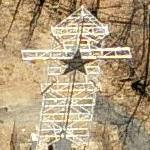 Star of Bethlehem (PA) (Birds Eye)