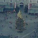 Christmas tree (Birds Eye)