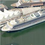 Princess Cruises ship 'Diamond Princess' (Birds Eye)