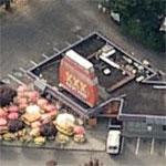 XXX Root Beer Drive-In (Birds Eye)