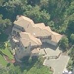 Delroy Lindo's House (Birds Eye)