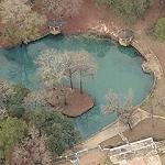 Radium Springs (Birds Eye)