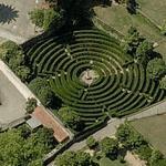 Maze (Birds Eye)