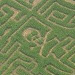 Skull & Crossed Bones maze