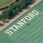 """""""Stanford"""""""