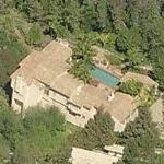 Tim Allen's House (Birds Eye)