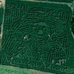 Meadow View Corn Maze