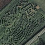 JAPAL Corn Maze