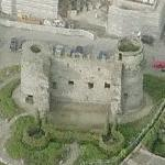 Carlow Castle (Birds Eye)