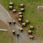 Amish buggies (Birds Eye)