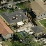 David Eigenberg's House (Birds Eye)