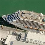 Carnival Valor (Birds Eye)