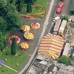 Circus (Birds Eye)