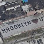 Brooklyn Loves You (Birds Eye)