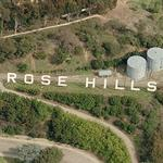 'Rose Hills'