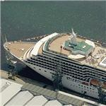 P&O Cruise Line's MS Arcadia (Birds Eye)