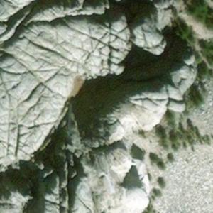 Mount Rushmore (Birds Eye)
