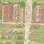 International Rose Test Garden (Bing Maps)