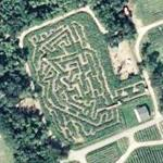 New York City Maze (Bing Maps)
