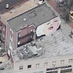 John Bailey's Marilyn Monroe Mural (Birds Eye)
