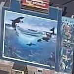 Wyland Whale Mural (sort of) (Birds Eye)