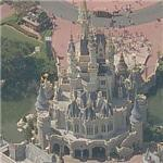 Disney World's Cinderella Castle (Birds Eye)